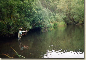 Trout Fishing at Oberon